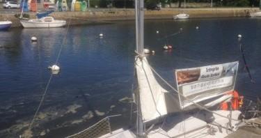 Noleggio barche Pont-l'Abbé economico Flirt