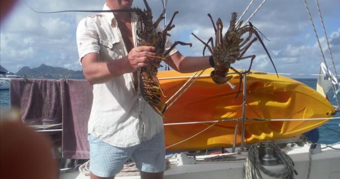 Noleggio Catamarano con o senza skipper Catana a Le Marin