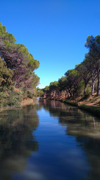 Noleggio Houseboat Canal-Du-Midi con una patente
