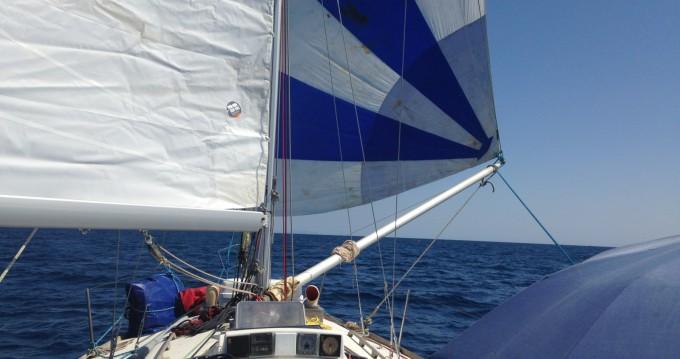 Noleggio barche Carter 37 a Le Grau-du-Roi su Samboat