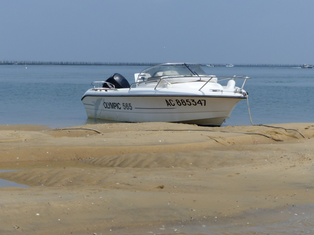 Noleggio barche Arcachon economico Olympic 565