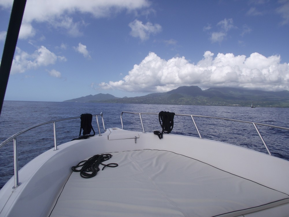 noleggio Barca a motore Basse-Terre - Kelt White shark 226