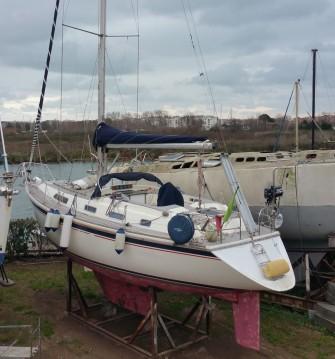 Noleggio barche Marina di Grosseto economico 38 Oceanranger