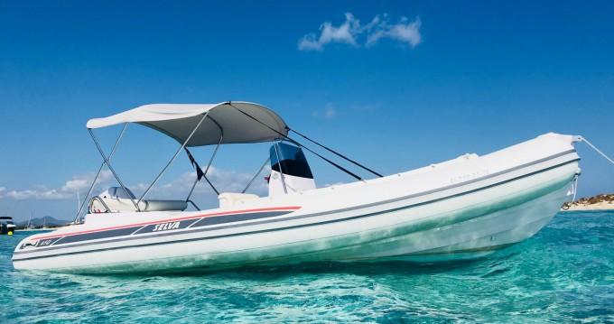 Noleggio Gommone con o senza skipper Selva a Ibiza Town