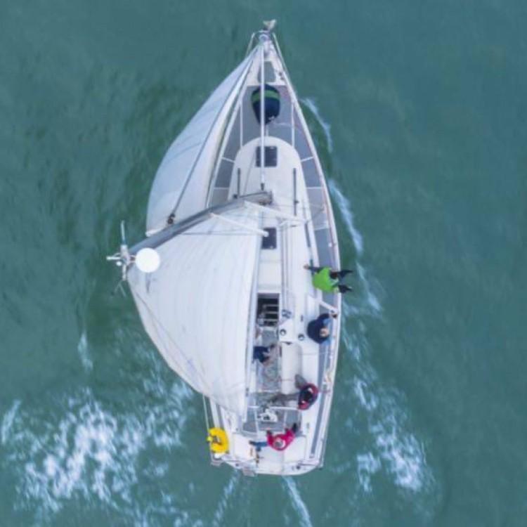 Noleggio barche Dehler Dehler 37 Benicarló su Samboat