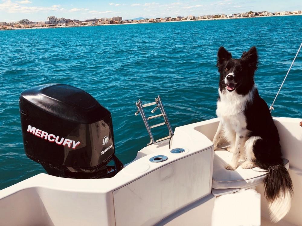 Noleggio barche Quicksilver Quicksilver 635 Commander  su Samboat