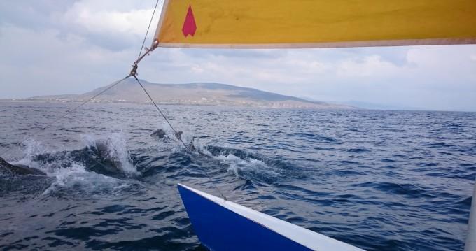 Noleggio Catamarano Dart con patente nautica