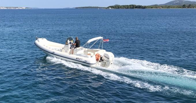 Noleggio Gommone a Biograd na Moru – Nuova Jolly Blackfin 25 Elegance