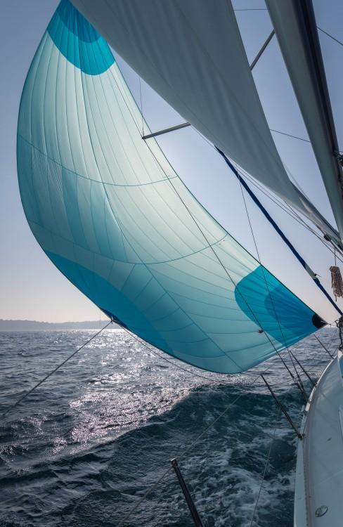 Noleggio barche Hanse Hanse 418 Pola su Samboat