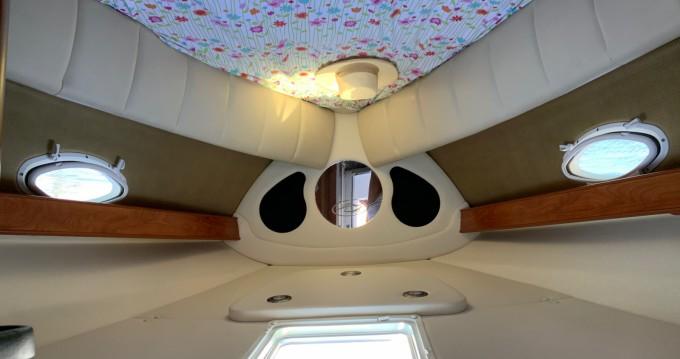 Noleggio yacht a Cannes – Rinker 260 EC su SamBoat