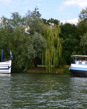 Noleggio Barca a motore a Boulogne-Billancourt – Suntracker suntracker