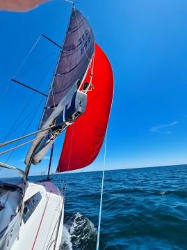 Noleggio Barca a vela con o senza skipper Pogo Structures a Vannes