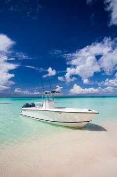 Noleggio Barca a motore contender 28 con patente nautica
