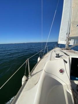 Barca a vela a noleggio a Andernos-les-Bains al miglior prezzo