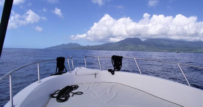 Noleggio barche Kelt White shark 226 a Basse-Terre su Samboat
