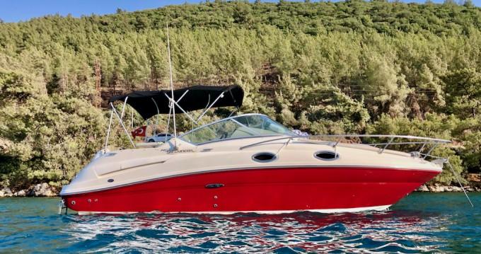 Noleggiare una Sea Ray Sea Ray Sundancer 240 a Bodrum