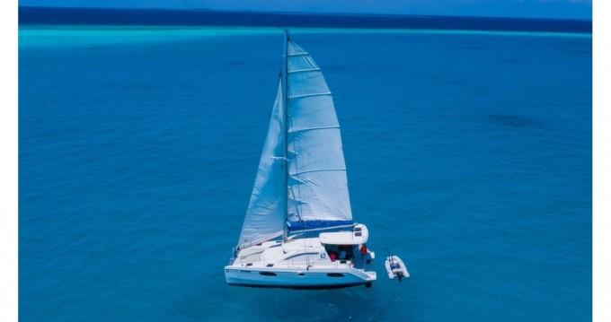 Noleggio Catamarano Robertson and Caine con patente nautica