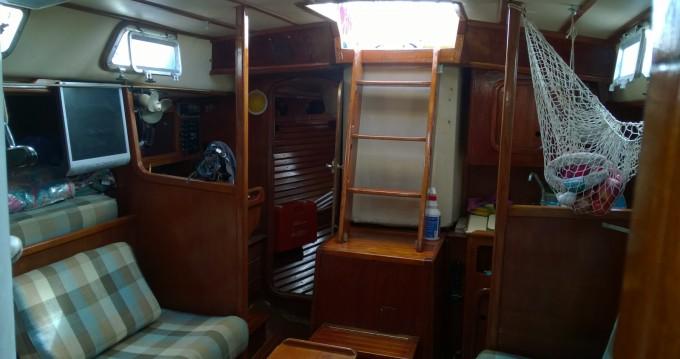 Noleggio barche X Ostia/Acilia economico CAT 38