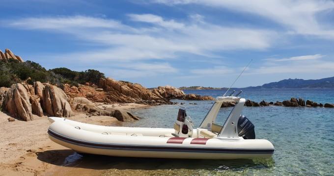 Noleggio barche Mariner SPEED  a Lu Canniscioni su Samboat