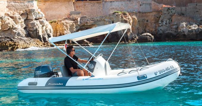 Noleggio Gommone con o senza skipper Protender a Palma de Maiorca